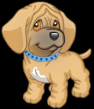 Danny | Puppy in My Pocket: Adventures in Pocketville Wiki | FANDOM powered by Wikia