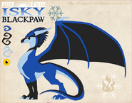 Pure lig isky blackpaw by dragonoficeandfire-d9ls682