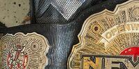 NEVER Openweight Championship