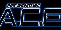 Pro-Wrestling A.C.E