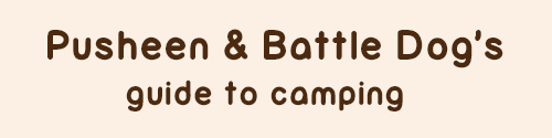 File:Pusheen and Battle Dog Camping.png
