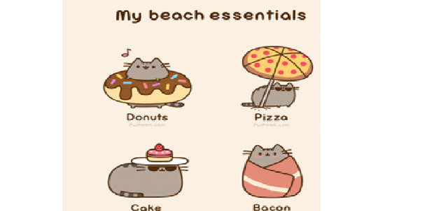 File:Beach essentials.png