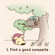 Find a Good Campsite