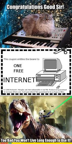 File:1 free internet.jpg