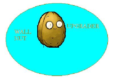 Wallnut upgrader