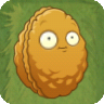 File:Wall-Nut PvZ2.png
