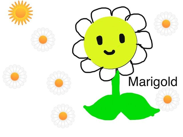File:Another Marigold drawing.jpg