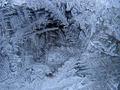 Thumbnail for version as of 23:05, November 17, 2014