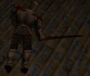 Knight corpse