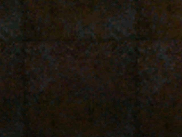 File:Sfloor1 2.jpg