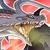 White Flame Holy Dragon Icon