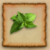 Leaves RSC