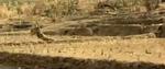 Rambo Pond Scene YouTube (3)
