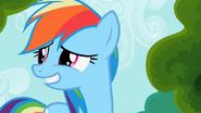 1000px-Rainbow dash awkward smile 2 S2E08