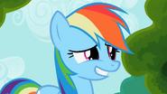 1000px-Rainbow dash awkward smile S2E08