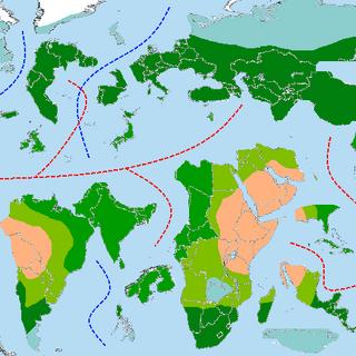 Rough Biomes Map