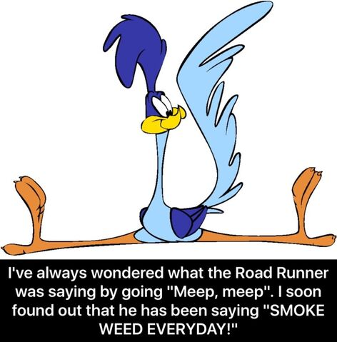 File:IFunny Road Runner SMOKE WEED EVERYDAY meme.jpeg