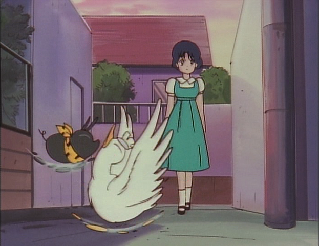File:Akane sees P-chan vs Mousse fight.png