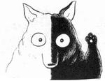 Shirokuro - Manga