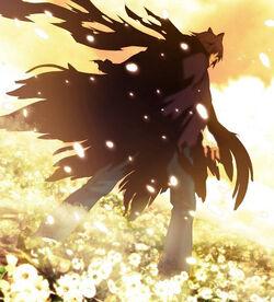 Shigeru's transformation