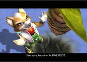 Alpine Root