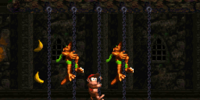 Chain Link Chamber (Donkey Kong Country 2: Diddy's Kong Quest)