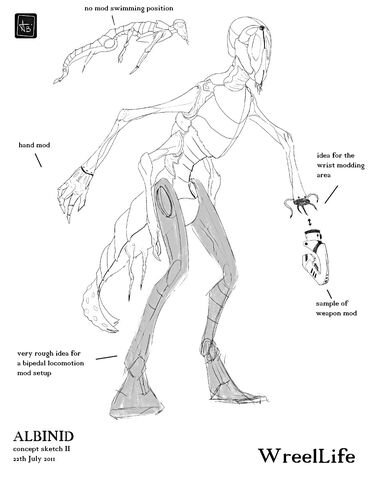 File:Albinid-sketch2-resized.jpg