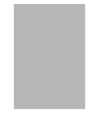 File:Silver Rythm Mark.png