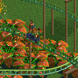 Raptor Racers Coaster RCT2 Icon