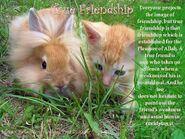 True-friendship (1)