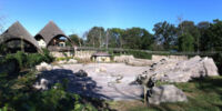 Schaefer Zoo