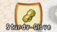 File:Sturdy Glove.jpg