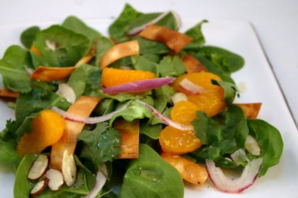 File:Spinsalad333.JPG