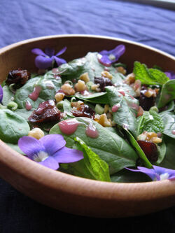 Sansa-salad