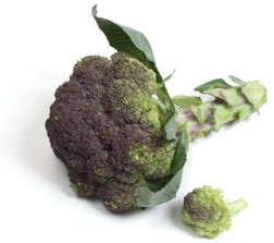 File:Purple broccoli.jpg