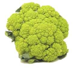 File:Broccoflower.jpg