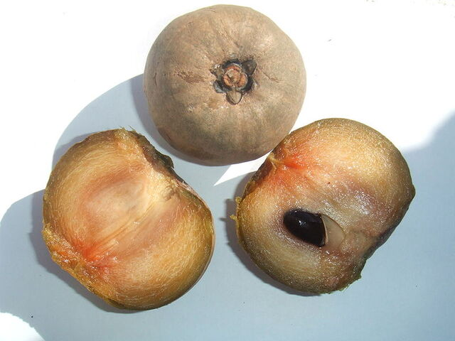 File:Sapodilla fruit.jpg