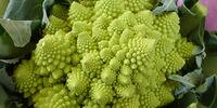 Broccoli Romanesco