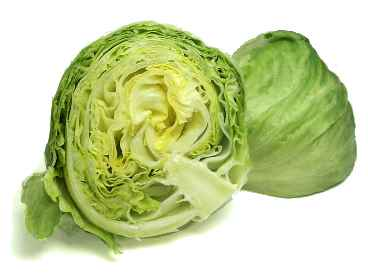 File:HeadLettuce.jpg