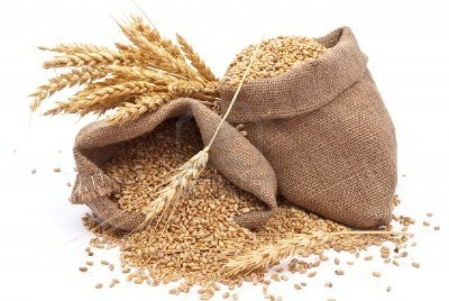 File:8378327-sacks-of-wheat-grains.jpg