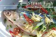 Steamfish