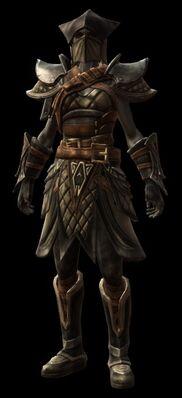 Wanderer Armor Set