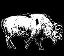 Buffalo Skin