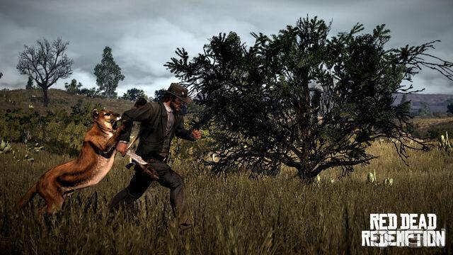 File:Red Dead Redemption Couger Attack.jpg