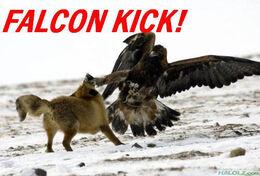 Falcon-kick