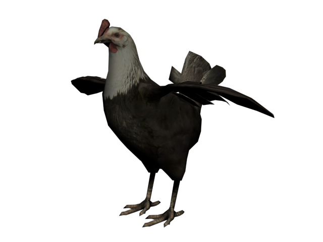 File:Gallina3.png