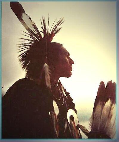 File:Native american .jpg