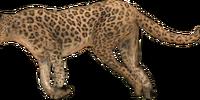 Legendary Animals