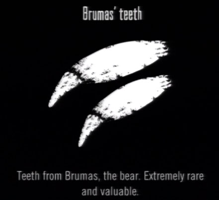 File:Animals Brumas Teeth.jpg