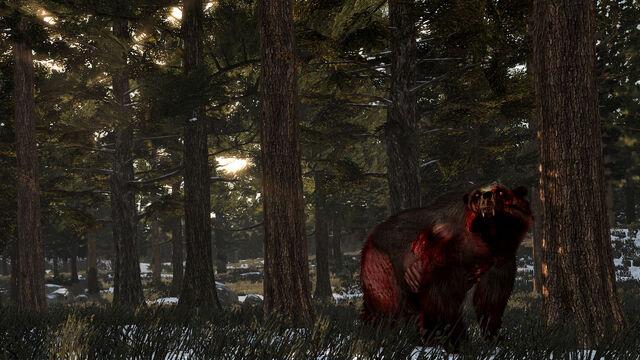 File:Rdr undead bear02.jpg